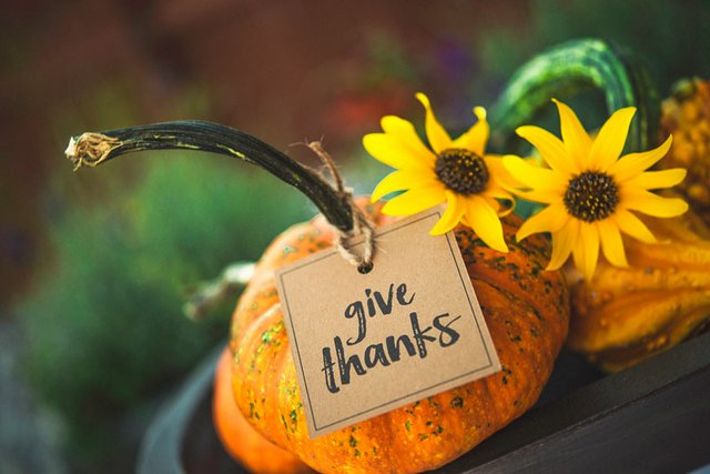 Gratitude in Suffering