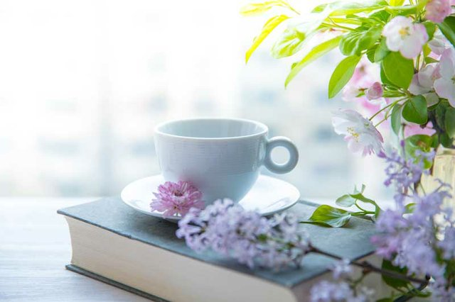 Christian Women on Quiet Time with God