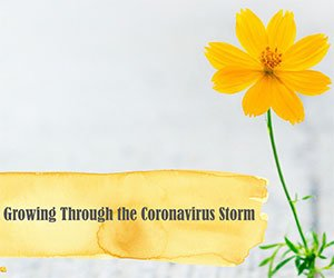 Growing Through the Coronavirus Storm