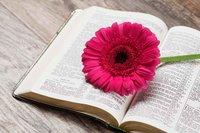 Anne Graham Lotz    A Love for God's Word
