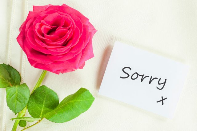Love Means Saying You're Sorry
